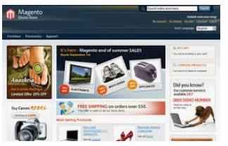 Magento ecommerce developers